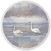 Round Beach Towel featuring the photograph Trumpeter Swan's Winter Rest by Jennie Marie Schell