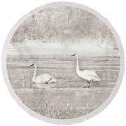 Round Beach Towel featuring the photograph Trumpeter Swan's Winter Rest Beige by Jennie Marie Schell