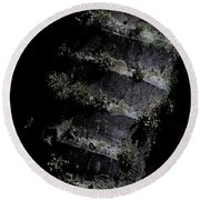 Trunk Moss Round Beach Towel