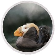 Tufted Puffin Round Beach Towel