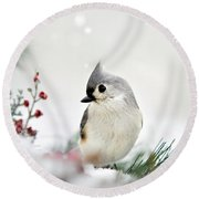 Tufted Titmouse Square Round Beach Towel