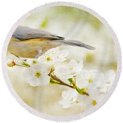 Tufted Titmouse With Seed Round Beach Towel