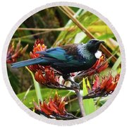 Tui In Flax Round Beach Towel by Angela DeFrias
