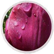 Tulip After The Rain Round Beach Towel