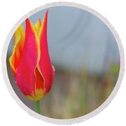 Tulip Fire Round Beach Towel