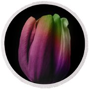 Tulip In The Shadows 3 Round Beach Towel