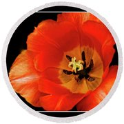 Tulip Macro Round Beach Towel by Kenneth Clinton