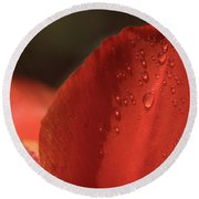 Tulip Petals After A Rain-3807 Round Beach Towel