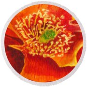 Tulip Prickly Pear Round Beach Towel by Eric Samuelson