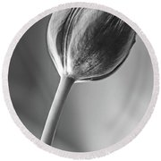 Tulip Shadow And Light Round Beach Towel by Marius Sipa