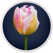 Round Beach Towel featuring the photograph Tulip Triumph - 2 by Paul Gulliver