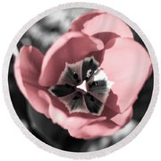 Tulip Up Close Round Beach Towel