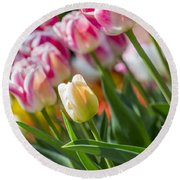 Round Beach Towel featuring the photograph Tulips by Angela DeFrias