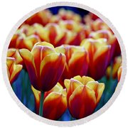 Tulips At Sunset Round Beach Towel by Michael Cinnamond