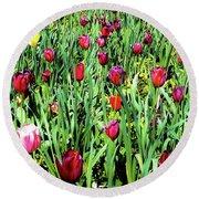 Tulips Blooming Round Beach Towel