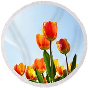 Tulips From A Low Point Of View Round Beach Towel by IPics Photography