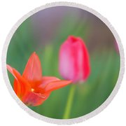 Tulips In My Garden Round Beach Towel