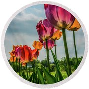 Tulips In The Spring Round Beach Towel by Jane Axman