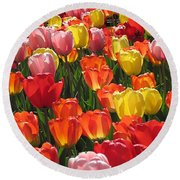 Tulips Like Sunlight Round Beach Towel