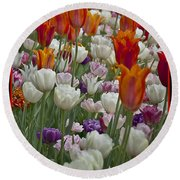 Tulips... Tulips... Everywhere Round Beach Towel