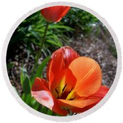 Round Beach Towel featuring the photograph Tulips Wearing Orange by Sandi OReilly