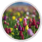 Round Beach Towel featuring the photograph Tulips by William Lee