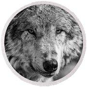 Tundra Wolf Round Beach Towel