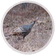 Turkey 1155 Round Beach Towel by Michael Peychich