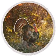 Round Beach Towel featuring the painting Turkey In The Woods by John Dyess