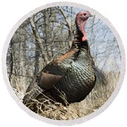 Turkey Tom Round Beach Towel