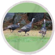 Turkey Trio Round Beach Towel