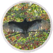 Turkey Vulture In Our Tree Round Beach Towel by Betty Pieper