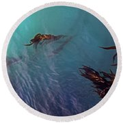 Turquoise Current And Seaweed Round Beach Towel