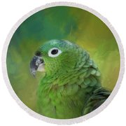 Turquoise-fronted Amazon Round Beach Towel