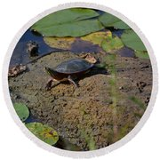 Turtle And Lily's Round Beach Towel