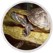 Turtle Reflections Round Beach Towel
