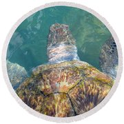 Turtle Texture Round Beach Towel