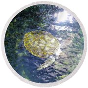 Round Beach Towel featuring the photograph Turtle Water Glide by Francesca Mackenney