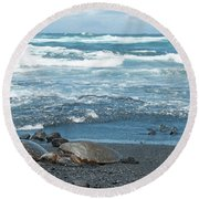 Turtles On Black Sand Beach Round Beach Towel