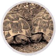 Turtles Pair Round Beach Towel by Gina Dsgn