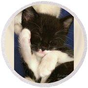Tuxedo Kitten Snoozing Round Beach Towel