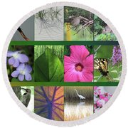 Round Beach Towel featuring the photograph Twelve Months Of Nature by Peg Toliver