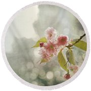 Twilight In The Garden Round Beach Towel