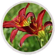 Round Beach Towel featuring the photograph Twin Daylilies by Sandy Keeton