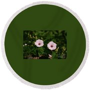 Twin Light Pink Glades Morning Glorys Round Beach Towel