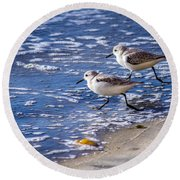 Twin Plovers Round Beach Towel