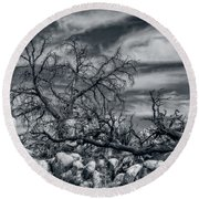 Twisted Branches Round Beach Towel