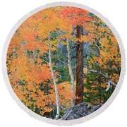 Twisted Pine Round Beach Towel