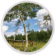 Round Beach Towel featuring the photograph Twisted Trunk by Kristin Elmquist