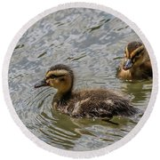 Two Baby Ducks Round Beach Towel